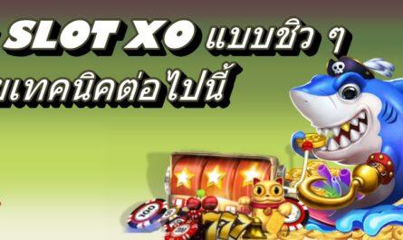 ปั่น SLOT XO แบบชิว ๆ ด้วยเทคนิคต่อไปนี้ slot slotxo สล็อต เกมสล็อต สล็อตออนไลน์ เกมสล็อตออนไลน์ ทดลองเล่นสล็อต โปรโมชั่นสล็อต ทดลองเล่นslotxo สมัครสมาชิกslotxo